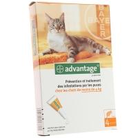 Advantage 40 pour chat de moins de 4 kg