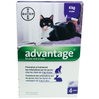 Advantage 80 pour chat de plus de 4 kg