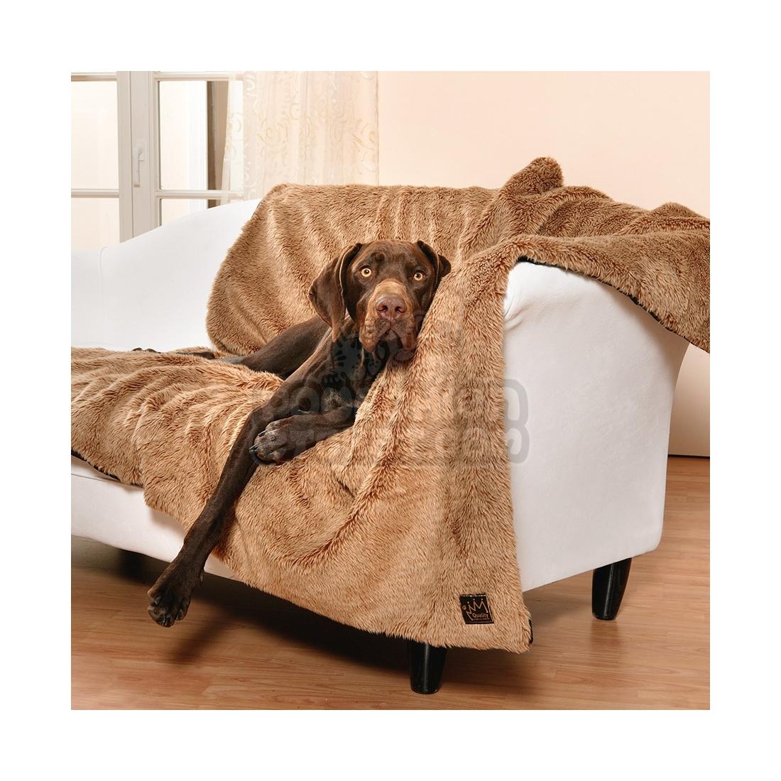 Couverture pour chien queeny teddy - Couverture pour petit chien ...
