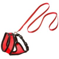 Ensemble laisse et harnais pour chat Original Harms rouge et noir