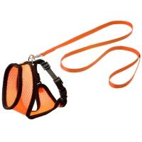 Ensemble laisse et harnais pour chat Original Harms orange et noir