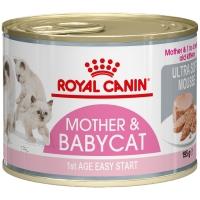Boites Royal Canin Babycat Instinctive