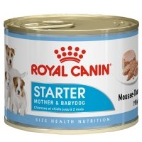 Boîtes Royal Canin Starter Mousse