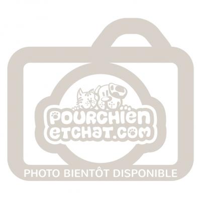 Croquettes chien Taste of the Wild Pacific Stream Puppy