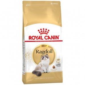 Royal Canin Feline Breed Nutrition Ragdoll Adult
