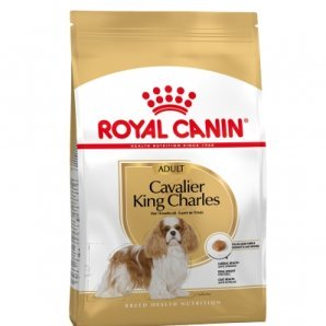 Royal Canin Mini Breed Cavalier King Charles Adult