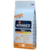 Croquettes chien ADVANCE Maxi Adult