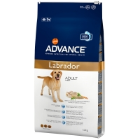 Croquettes chien ADVANCE Labrador