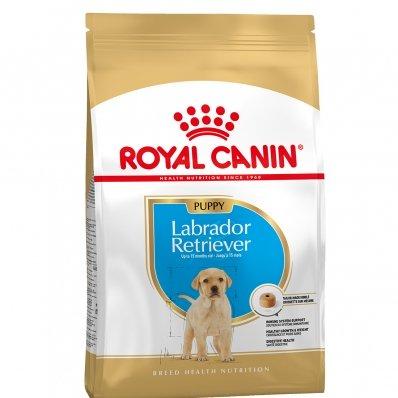 Royal Canin Maxi Breed Labrador Retriever Junior