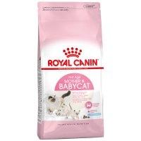 Royal Canin Croissance Babycat 34