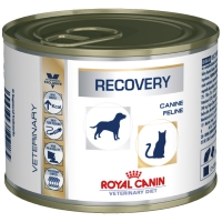 Boîtes Royal Canin Veterinary Diet Recovery