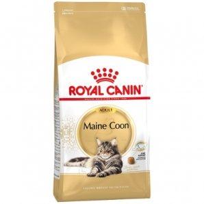 Royal Canin Feline Breed Nutrition Maine Coon 31 Adult