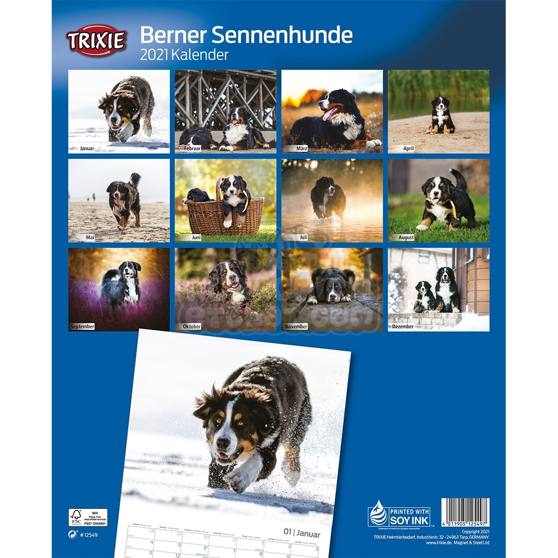 Calendrier 2021 Bouvier Bernois   pourchienetchat.com