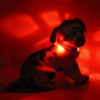 Collier lumineux pour chien LEUCHTIE Mini rouge