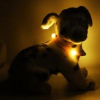 Collier lumineux pour chien LEUCHTIE Mini orange foncé