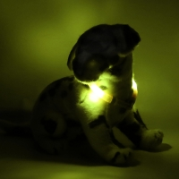 Collier lumineux pour chien LEUCHTIE Mini jaune