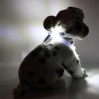 Collier lumineux pour chien LEUCHTIE Mini blanc