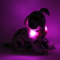 Collier lumineux pour chien LEUCHTIE Mini rose