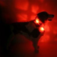 Collier lumineux pour chien LEUCHTIE Plus rouge