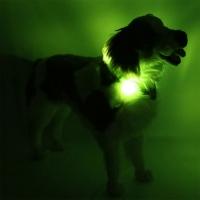 Collier lumineux pour chien LEUCHTIE Plus vert fluo