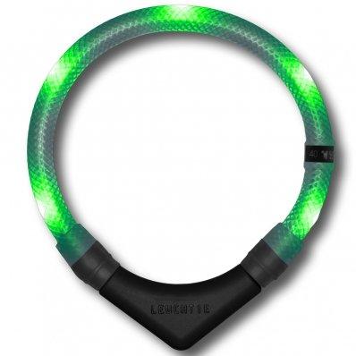 Collier lumineux pour chien LEUCHTIE Premium vert transparent
