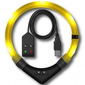 Collier lumineux pour chien LEUCHTIE Premium Easy Charge jaune
