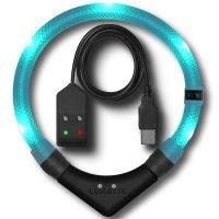Collier lumineux pour chien LEUCHTIE Premium Easy Charge bleu turquoise