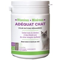 ADEQUAT Chat