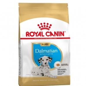 Royal Canin Maxi Breed Dalmatien Junior