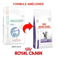 Royal Canin Veterinary Diet Chat Dental DSO 29