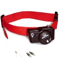 Collier anti-fugue PetSafe PWF19-10762