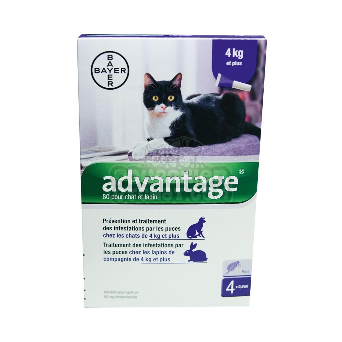 advantage 80 pour chat de plus de 4 kg. Black Bedroom Furniture Sets. Home Design Ideas
