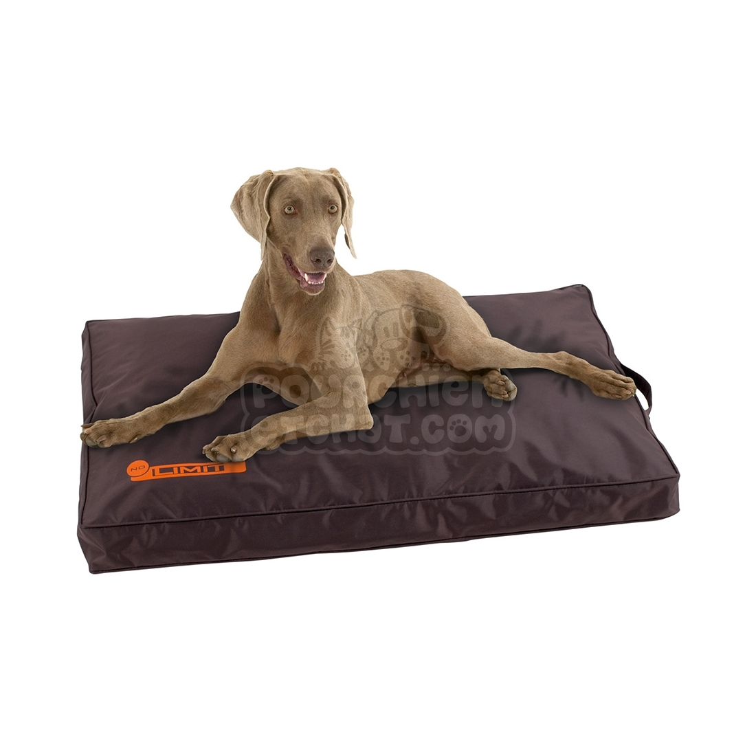 coussin pour chien no limit marron. Black Bedroom Furniture Sets. Home Design Ideas
