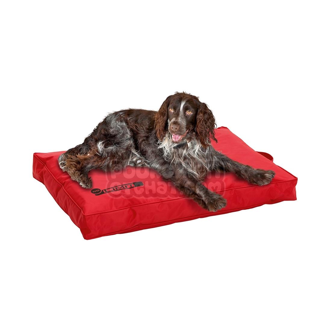 Coussin pour chien no limit rouge - Coussin pour chien ...