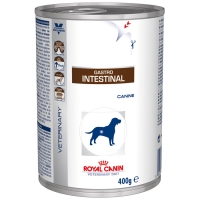Boîtes Royal Canin Veterinary Diet Chien Gastro Intestinal