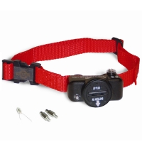 Collier anti-fugue PetSafe PIG19-10764